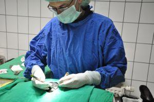 Kleintierpraxis Dr. von Kropff in Grevenbroich