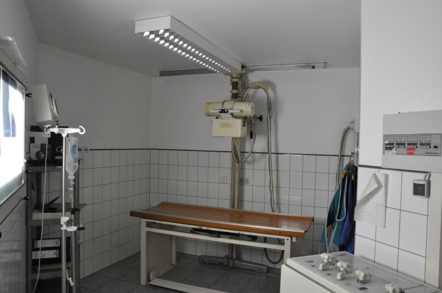 Röntgenaufnahmen - in unsere Tierarztpraxis können wir auch Röntgenaufnahmen direkt anfertigen