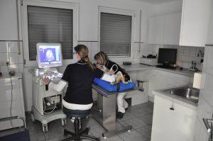Ultraschall - Kleintierpraxis in Grevenbroich